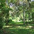 Los Naranjos公園