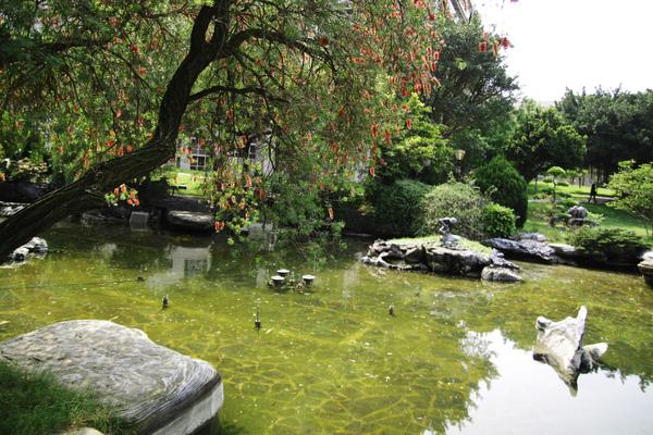 思園附近小湖