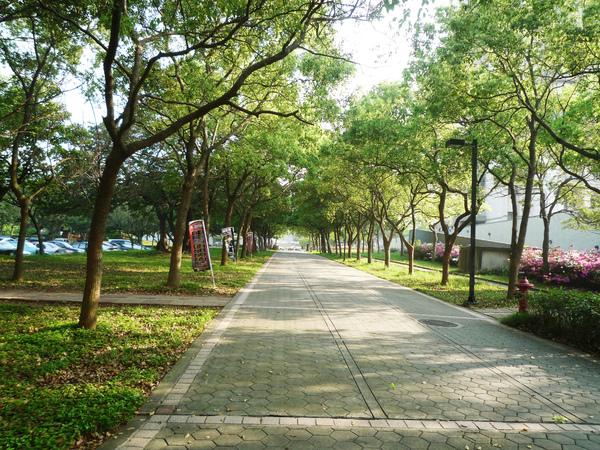 綜一綠意步道之二