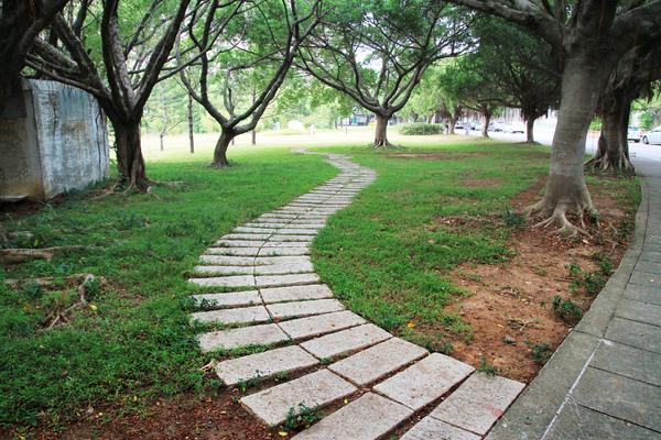 環校道路與竹湖間