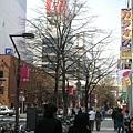 怎麼拍都美的札幌街道