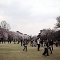 2008.03.28 053.jpg