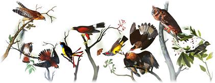 John James Audubon 美國鳥類學家226歲冥誕.2011年4月26日.google