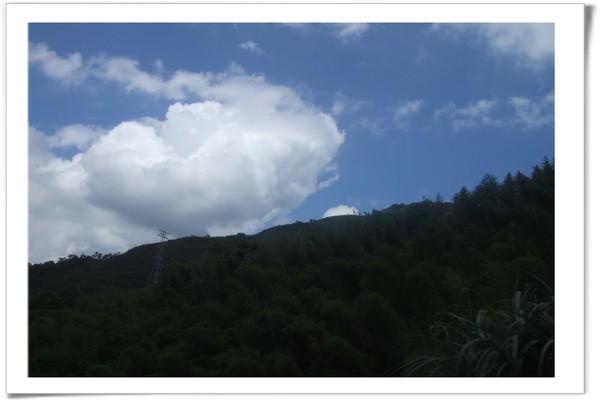 20080630 復興鄉 綠光森林-19.jpg