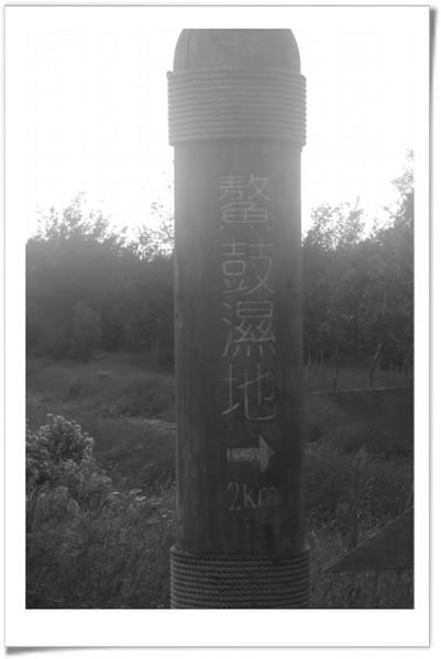 20080705 嘉義行- 鰲鼓濕地-2.jpg