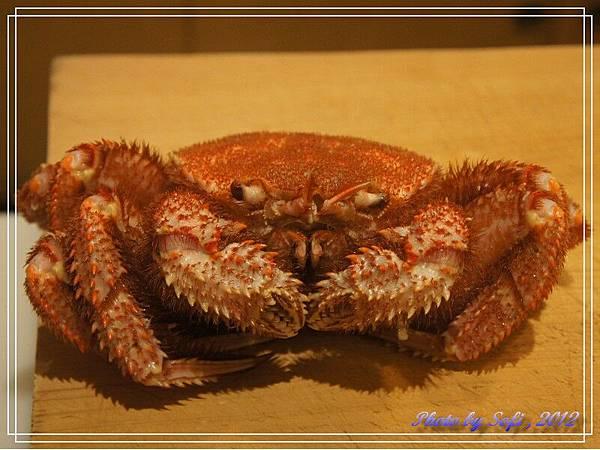 20121110 [台北] 高玉-毛蟹
