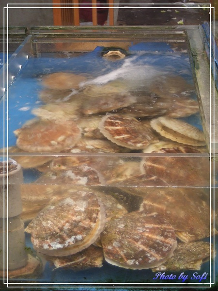 20100731 [桃園]竹圍漁港-1.jpg
