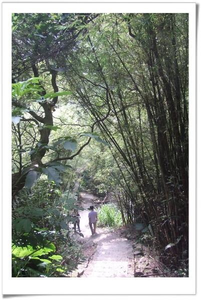 20080830 [台北] 坪頂古圳步道-7.jpg