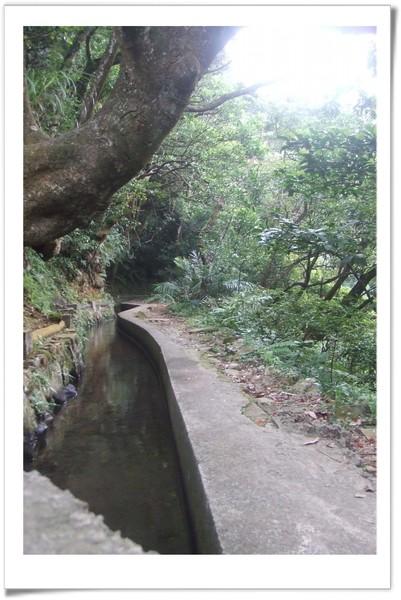 20080830 [台北] 坪頂古圳步道-10.jpg