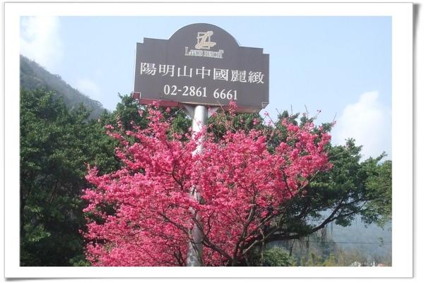 20090211 [台北] 陽明山中國麗緻-1.jpg