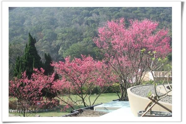 20090211 [台北] 陽明山中國麗緻-6.jpg