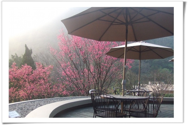 20090211 [台北] 陽明山中國麗緻-9.jpg