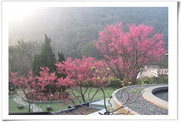 20090211 [台北] 陽明山中國麗緻-11.jpg