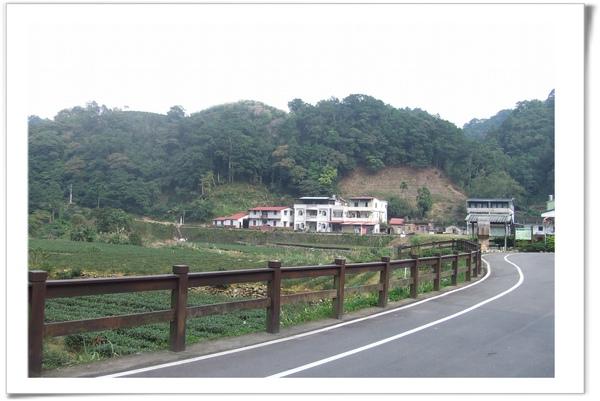 20091108 [坪林] 金瓜寮-3.jpg