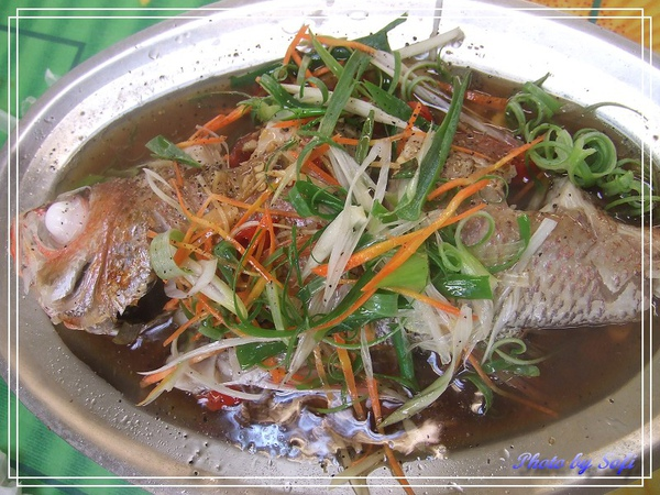 20100731 [桃園] 竹圍漁港-5.jpg