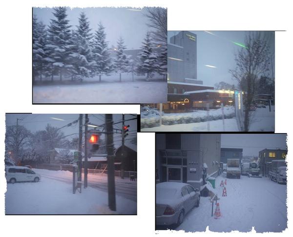 雪茫茫一片.jpg