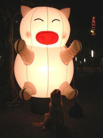 日本行 元宵燈會 486.jpg