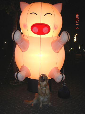 日本行 元宵燈會 487.jpg