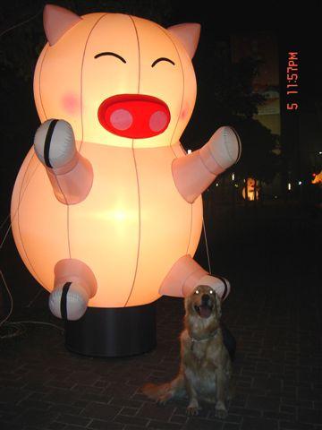 日本行 元宵燈會 510.jpg