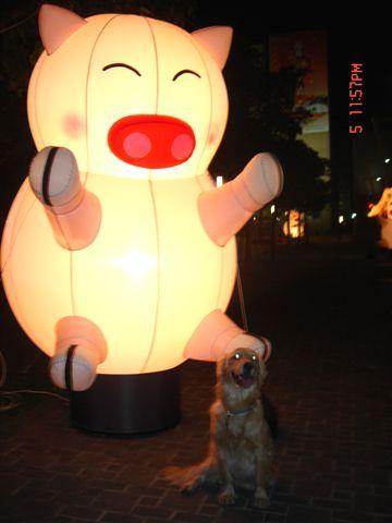 日本行 元宵燈會 511.jpg