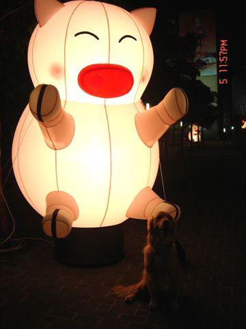 日本行 元宵燈會 512.jpg