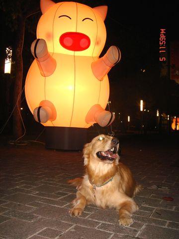 日本行 元宵燈會 517.jpg