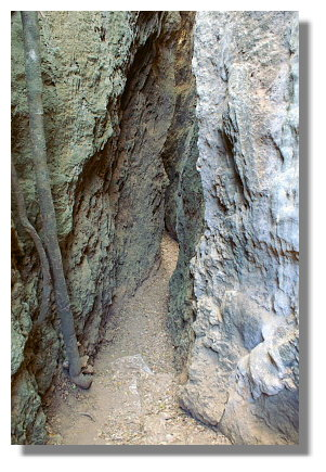 墾丁社頂自然公園珊瑚礁裂谷