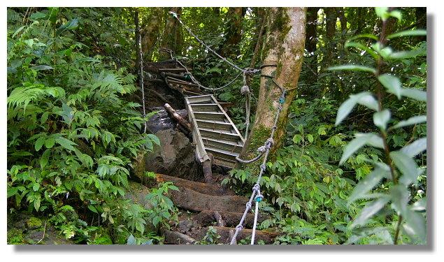 往雲森瀑布下方的山路