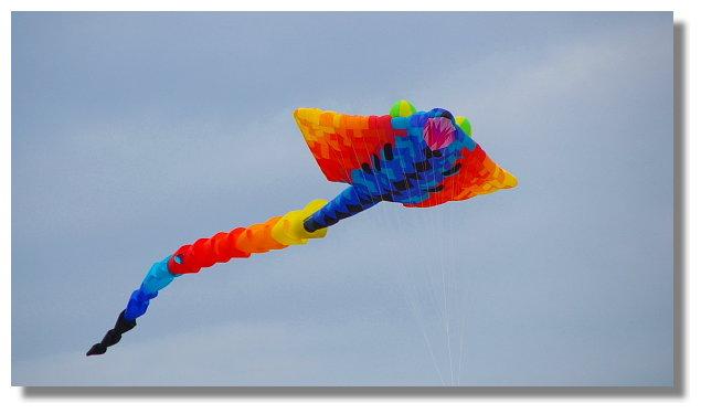 風之舞:2011新北市北海岸藝術節