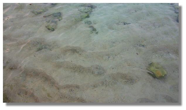 Unawatuna海灘