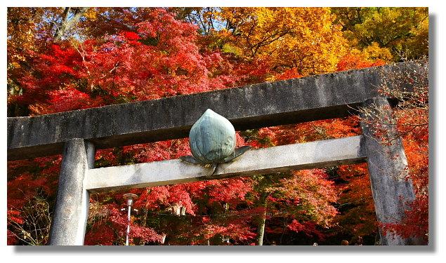 犬山桃太郎神社