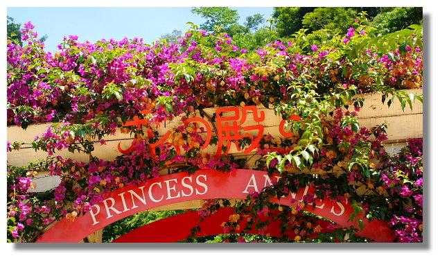 台中新社安妮公主花園