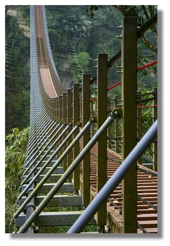 南投竹山天梯(梯子吊橋)