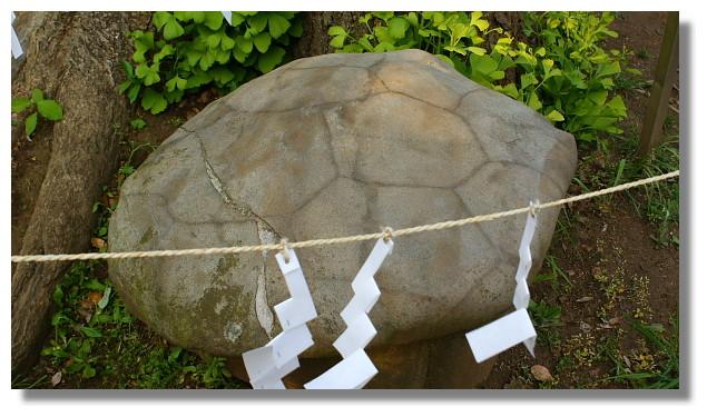 江島神社龜石