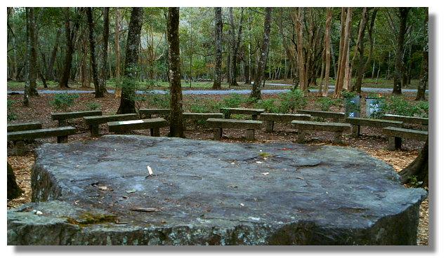 南投奧萬大國家森林遊樂區