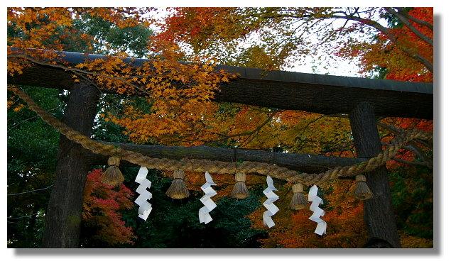京都野宮神社