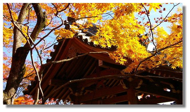 京都常寂光寺