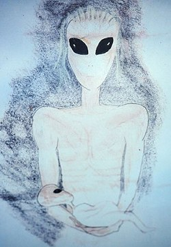 英國師奶「飛碟磁鐵」17度遇外星人3.jpg