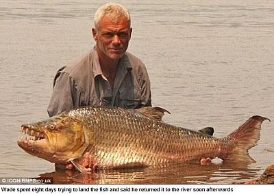 英男子捕獲巨大食人魚 身長5英尺、45公斤重3.jpg
