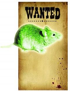 放射鼠 核工廠 - 核工廠 撲殺 放射鼠1.jpg