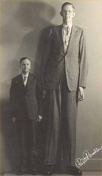 奧爾頓巨人 羅伯特3.jpg