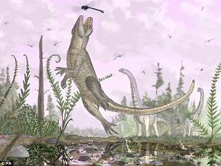 貓鱷魚 化石.jpg