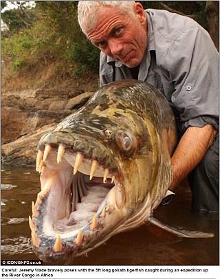 英男子捕獲巨大食人魚 身長5英尺、45公斤重1.jpg