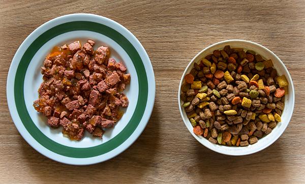 鮮食與乾糧的完美平衡