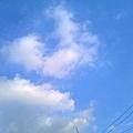 照片0158_副本