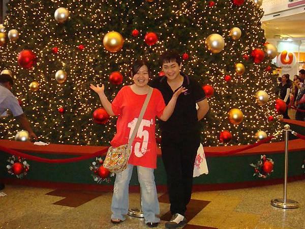 我要征服这棵圣诞树哦!!