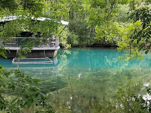 Homosassa Springs (30).jpg