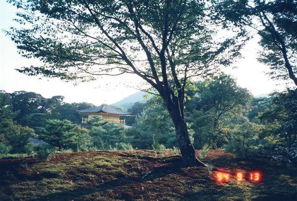 金閣寺6.JPG