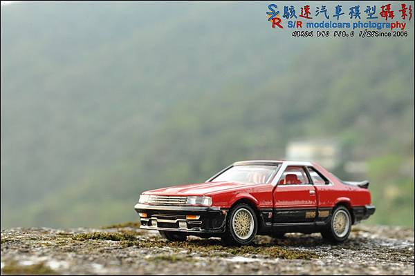 NISSAN Skyline 2000 Turbo RS by Tomica Premium 001.JPG