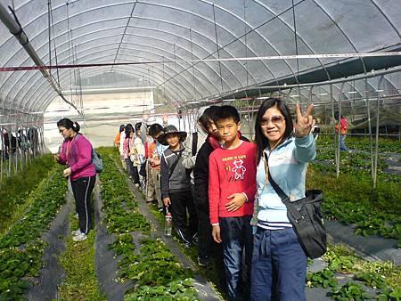 安親班學生參觀農場